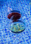 verre a vin flottant
