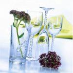 verre a pied fleury epi