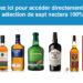 verre a whisky irlandais